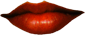 Beautiful women lips. Artist & Founder Chris Staebler